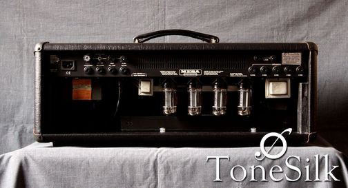 Mesa Boogie DC10 head back